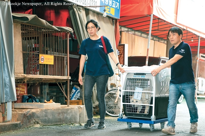 Animal rights and life prevail in market closure